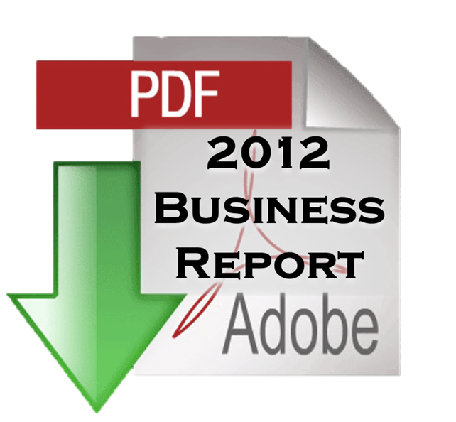 2012_business report download